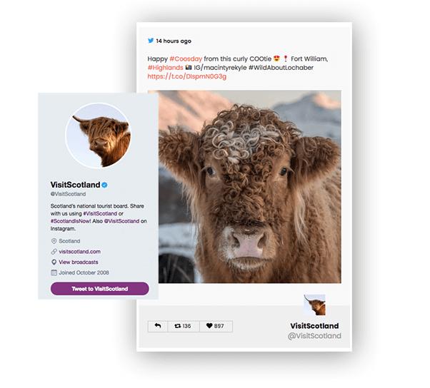 AccessPress-Twitter-Feed-Pro