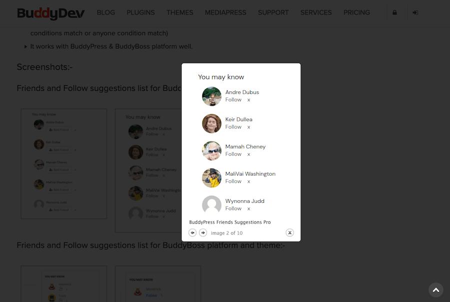 BuddyPress Friends Suggestions Pro